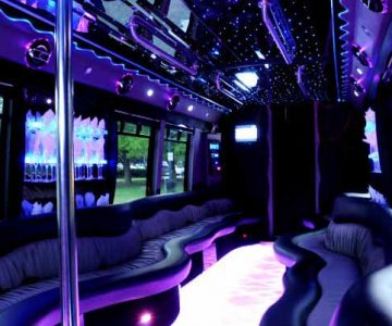 22 people party bus limo Clarksville
